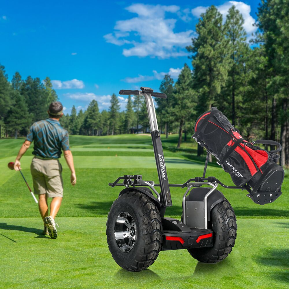 Segway Hoverboard Golf