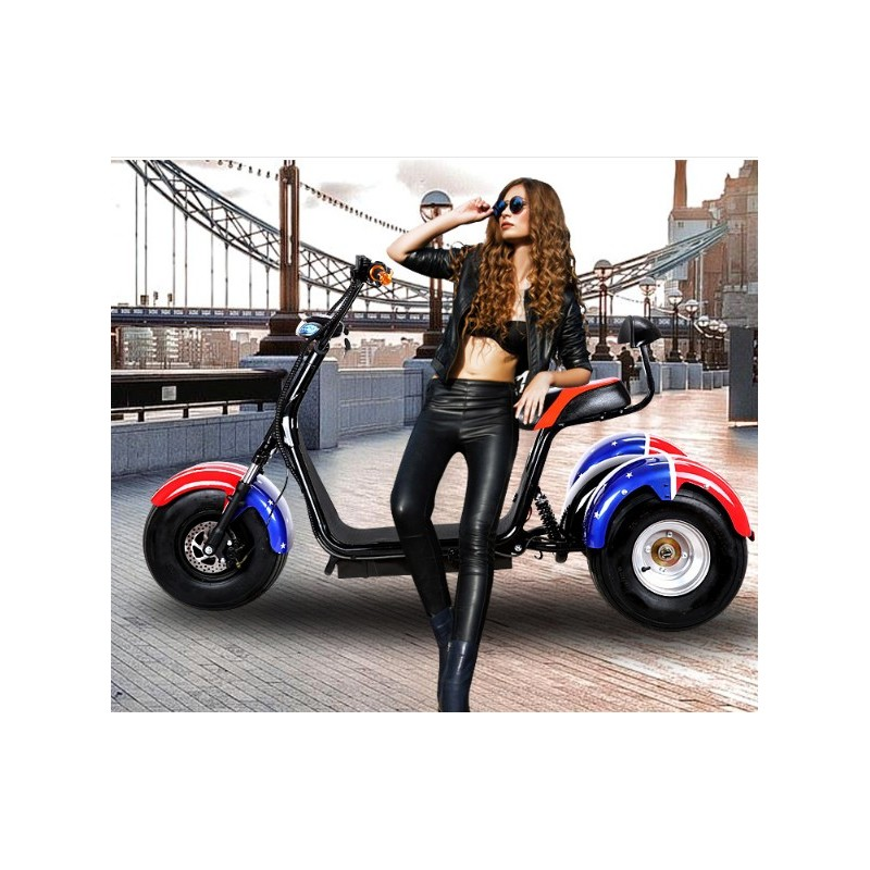 elektrotrike trike scooter roller neuheit elektroroller 2000 watt strassenzulassung. Black Bedroom Furniture Sets. Home Design Ideas